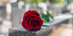 red rose on top of a headstone